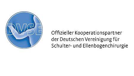 DVSE Logo medi