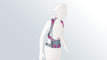 Rückenorthese Illustration - Die Rückenorthesen Spinomed