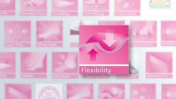 Flexibility - Flexibility